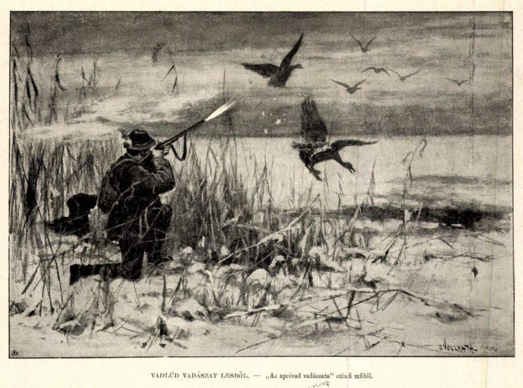 Vadlúd vadászat lesből